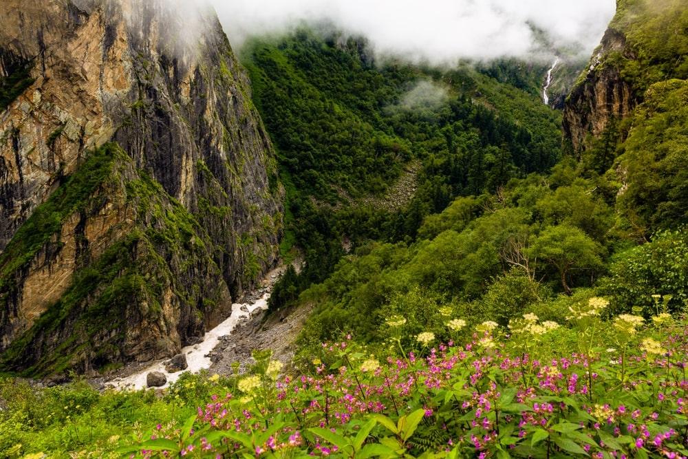 _Valley of Flowers Trek